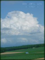 DSCF0847 2008.07.18
