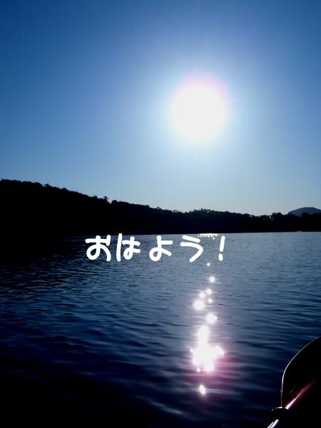 2011 08 15_7615