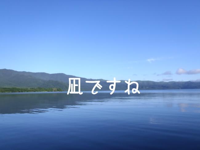 2011 08 15_7608
