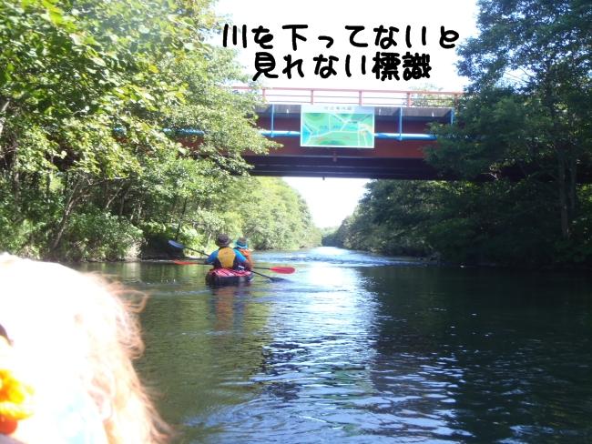 2011 08 15_7713