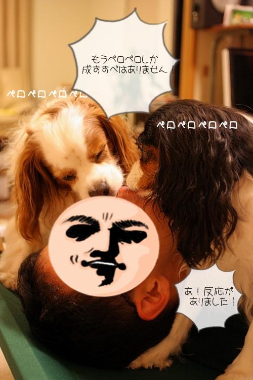 IMG_4863.jpg