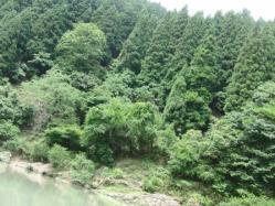 保津川25