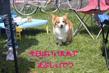 IMG_0719.jpg