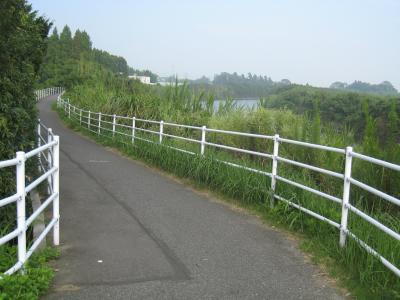 茂原自転車道1