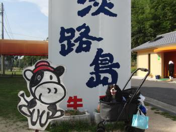 淡路島牧場 るぃ