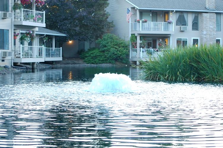 池とアパート