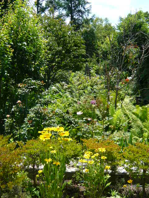 安曇野7月南の庭