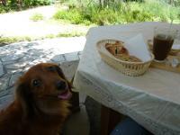 安曇野7月カフェでぴあのと