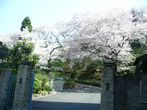鳩山会館1