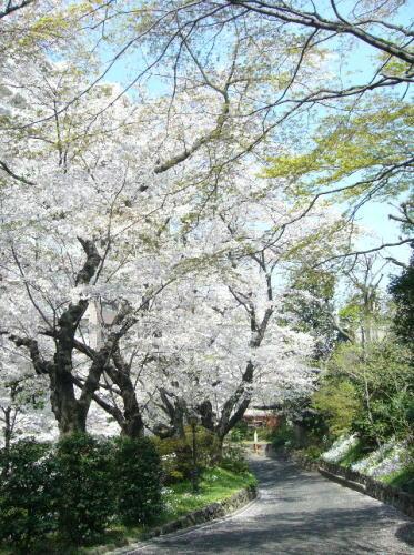 鳩山会館4