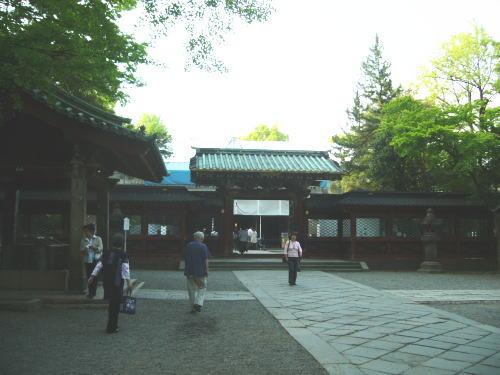 根津神社・つつじまつり1