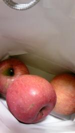りんご111128