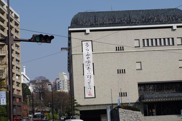 IMGP9118.jpg