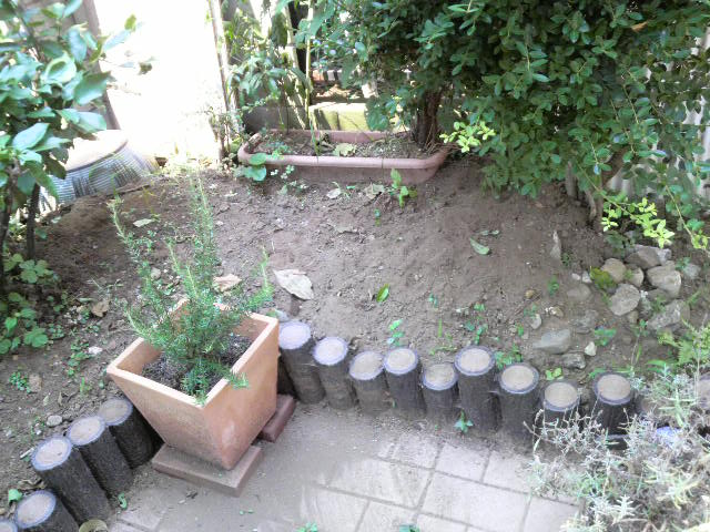 20100722 (28)