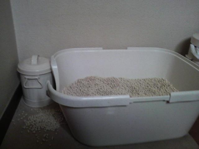 トイレ砂大量OB