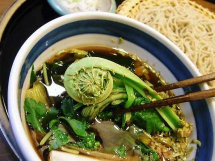 10-4-28 山菜汁の山菜