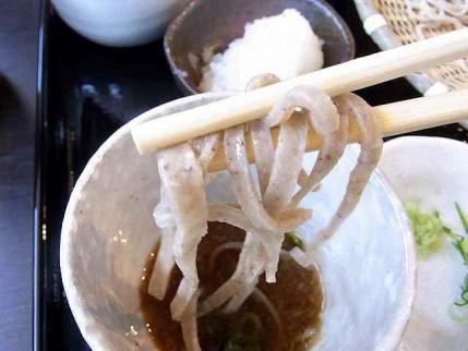 10-5-5 福井食べ