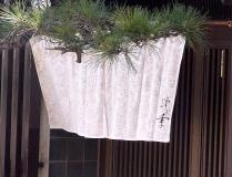 11-3-10 暖簾