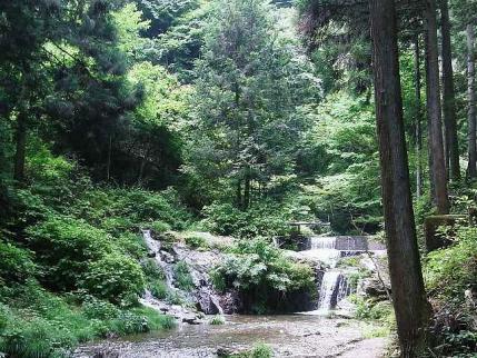 11-6-5 ハイキング8滝