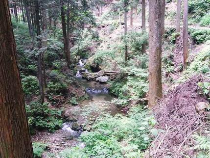 11-6-5 ハイキング6滝