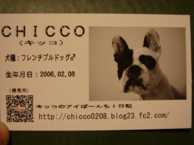DSC00611_convert_20080331225448.jpg