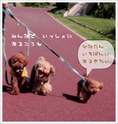 歩いて歩いて~