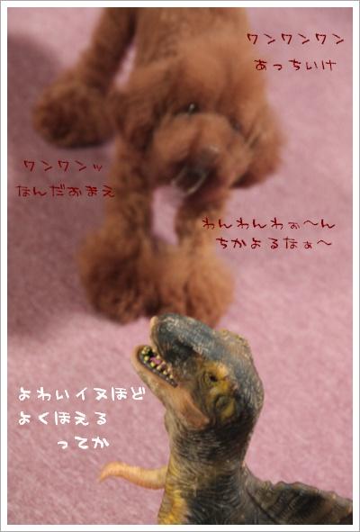 すごい犬っぽい~!