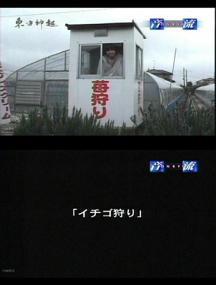 2007519-1.jpg