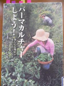 8-26book-b.jpg