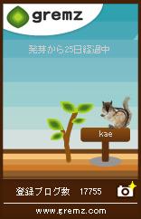 risu-2.jpg