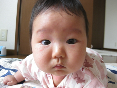 2008-8-31 夕ゴハン 001