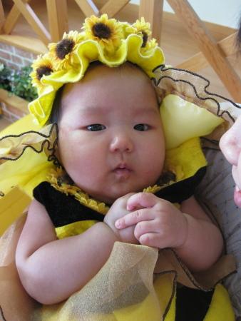 2008-09-14 ハチさん
