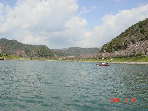 青野川を遡上