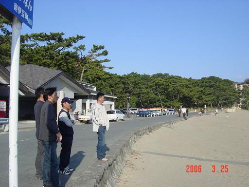 海を見つめる猿たち