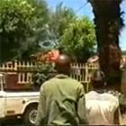車で木を引っ張る
