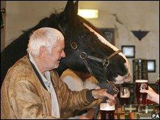 お酒を飲む馬