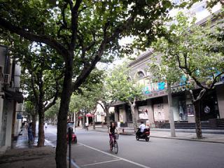 2010_09190333.jpg