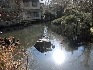 2011_01060083.jpg