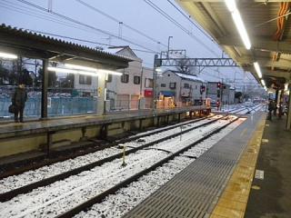 2011_02150036.jpg