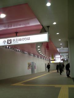 2011_03133860.jpg