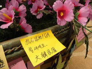 2011_03181232.jpg
