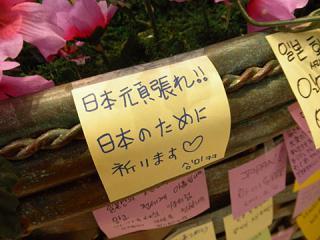 2011_03181233.jpg