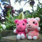 hawaii_20050104.jpg