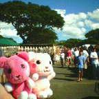 hawaii_20050105.jpg