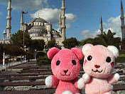turkey_20060722.jpg