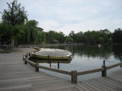 水上デッキとボート