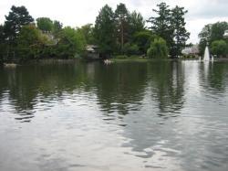 常磐公園の千鳥が池