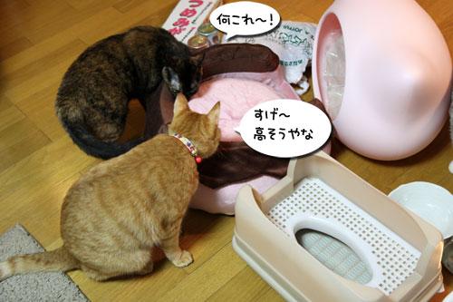 ふかふか猫ベッド!