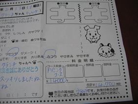 IMG_5069tori.jpg