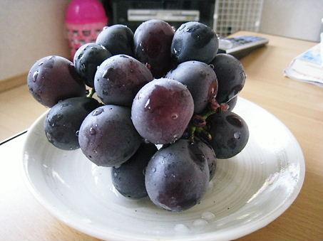 葡萄だょ♪